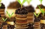 Как проверить рентабельность инвестированного капитала?