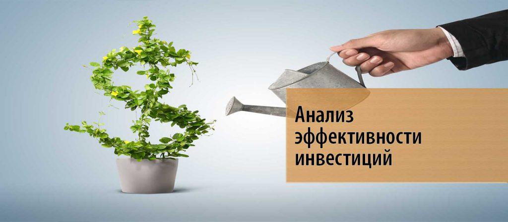 Виды анализа прибыльности инвестиций
