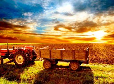 Прибыльный бизнес в сельской местности как открыть?